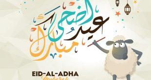 خلفيات عيد الاضحى المبارك , بتبحثي عن صور تهاني بمناسبة العيد الكبير
