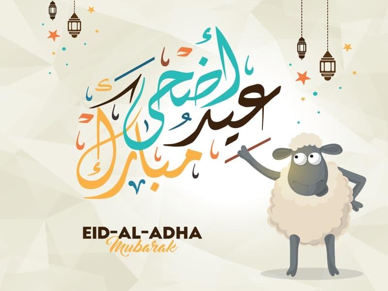 صور خلفيات عيد الاضحى المبارك , بتبحثي عن صور تهاني بمناسبة العيد الكبير