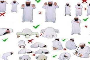 صور تعليم الصلاة الصحيحة , صلي صلاتك لرب العباد بالطريقة السليمة