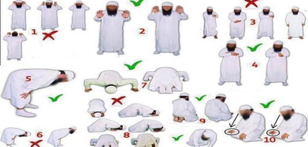 صورة تعليم الصلاة الصحيحة , صلي صلاتك لرب العباد بالطريقة السليمة