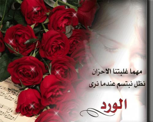 صور حكم عن الورد , اقوال جميلة اوي عن الورد العطري