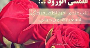 حكم عن الورد , اقوال جميلة اوي عن الورد العطري