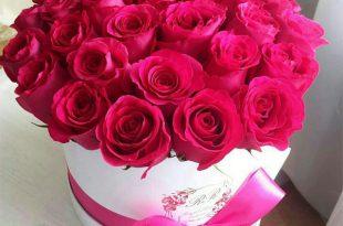 صور احلى صور ورد , باقات من الورد مميزة ومبهجة