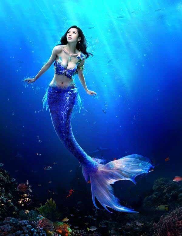 صور صور عروسه البحر , حورية البحر اللى تخطف العيون من سحرها
