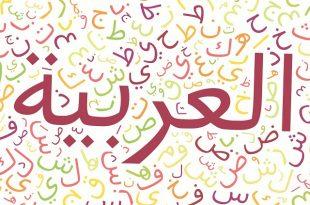 صور كلمات عربية , كلمات عربيه فصحي نادره