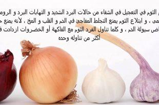 صورة ماهي فوائد الثوم , فائده الثوم لعلاج الامراض و الوقايه منها