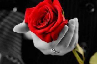 صورة قصص رومنسيه , روايات حب و عشق ممتعه