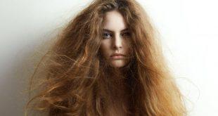 علاج الشعر الجاف , وصفات طبيعيه لعلاج جفاف الشعر