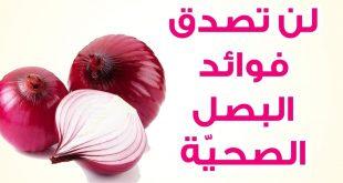 فوائد البصل , اهميه البصل للجسم
