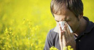 حساسية الربيع , اسباب و علاج الحساسيه