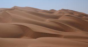 موضوع عن تعمير الصحراء , استصلاح الصحراء وتعميرها