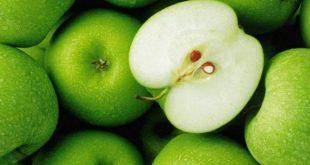 فوائد التفاح الاخضر للحامل , اهميه تناول التفاح الااخضر للجنين وللحامل