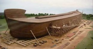 سفينة نوح عليه السلام , قصه سيدنا نوح عليه السلام