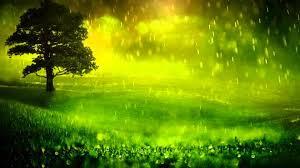 صورة تفسير اللون الاخضر , معلومات لم تعرفها عن اللون الاخضر في الحلم