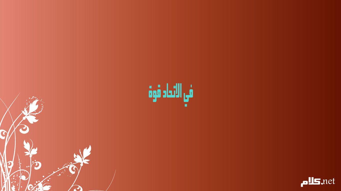 صورة حكمة عن التعاون , عبارات عن التعاون تبهر