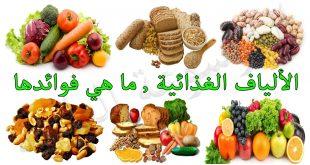 ماهي الاطعمه التي تحتوي على الياف , اكثر الاطعمة افادة للجسد