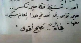 اشهر ما قيل عن الحب , كلمات في الحب رائعة