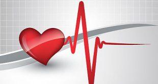 تخطيط القلب الطبيعي , قراءة تخطيط القلب