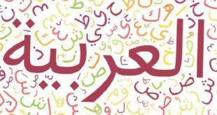معنى كلمة ثلة , معاني الكلمات في المعاجم العربيه