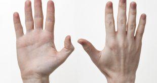 اليد في المنام , تفسير اليد فى المنام