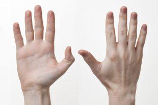 صورة اليد في المنام , تفسير اليد فى المنام
