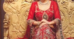 صورة الساري الهندي للمحجبات , اشكال للساري الهندي روعه