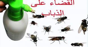 حل للقضاء على الذباب ,طرق سحريه للتخلص من الحشرات