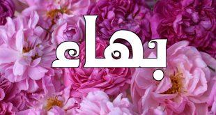 صورة اسم ولد ينتهي بالف وهمزه ,اسماء مواليد جدد