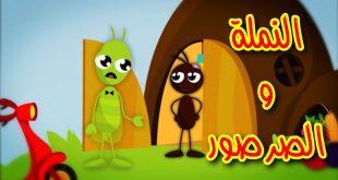 صورة نمي فكر طفلك بأروع القصص ,قصة النملة والصرصور