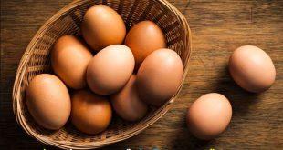 صورة اكل البيض في النوم خير ولا شر , تفسير اكل البيض المسلوق في المنام