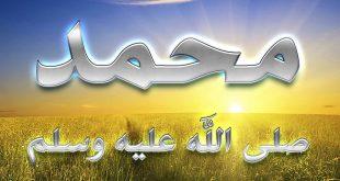 تفسير رؤية النبي في المنام , معلومات لم تعرفها عن رؤية الرسول فى المنام