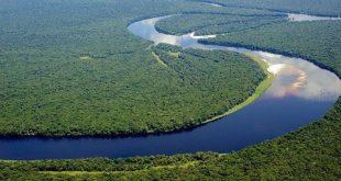 اهم نهر في الكاميرون