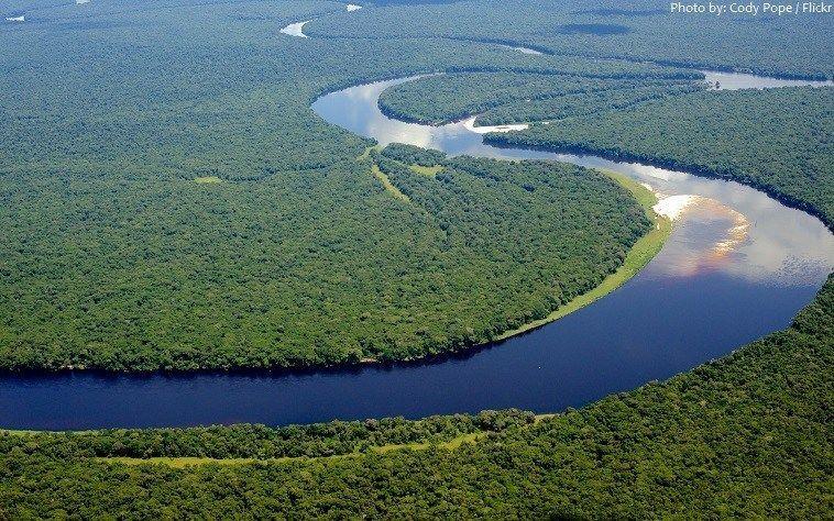 صورة اهم نهر في الكاميرون, اطول انهار العالم 4470