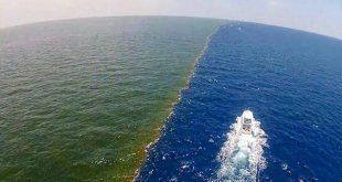 صورة تعريف بحر الظلمات، ما هو بحر الظلمات 6361 3 310x165